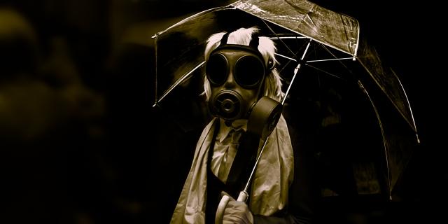 Paraplyjenta