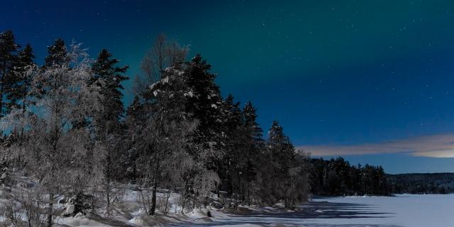 Frisk Vinternatt
