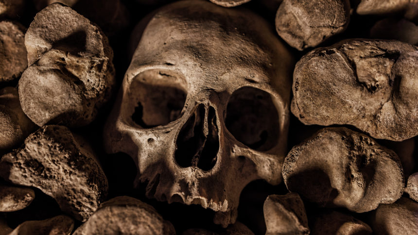 When it comes to cultural experiences, I think I'm a bit outside the box regarding taste. Perhaps that's why I ventured to a crypt in Brno (Czech Republic) only to have my jaw drop as I gazed upon some 50,000 skulls & bones. And it truly felt as they gazed right back at me! A truly amazing and chilling trip. Would you dare venture deep underground to greet these guys?